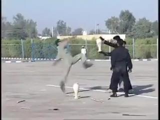 Давайте посмотрим, как закаляется сталь, иранский спецназ и глиняные кувшины