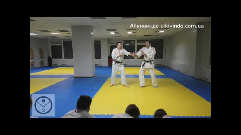 Айкивиндо. Кататэ дори гекоханми Котэгаеши. Aikivindo Katate dori Kote gaeshi. Aikido Lessons.