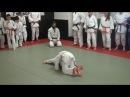 Judo Club Zwijndrecht vzw - 2017 - Misato Oi