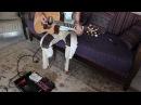Beautiful Guitar Loop (Typical Life)   Hvetter