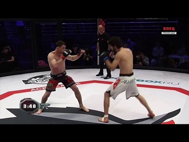 Забит Магомедшарипов vs Шейх Магомед Арапханов