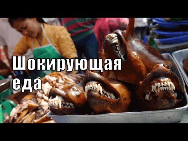 Самая шокирующая еда Азии