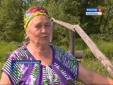 Жители деревни Бурцево в Костромской области ежедневно выбирают: мочить ноги ил...