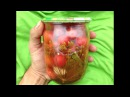 Маринованные помидоры черри / Заготовки на зиму