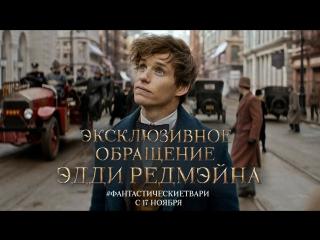 Обращение Эдди Редмэйна к российским поклонникам мира Дж. К. Роулинг