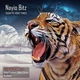 Nayio Bitz - Sugar Pie Honey Punch (Original Mix)