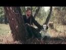 Белый Бим Чёрное ухо (1977) – Вячеслав Тихонов в роли хозяина собаки Бим.