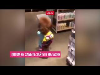 Секрет этой девочки в том, что она - собака