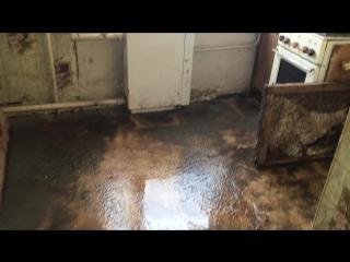 Жители поселка Красный Узел мерзнут, тонут в канализационных водах, задыхаются от нечистот