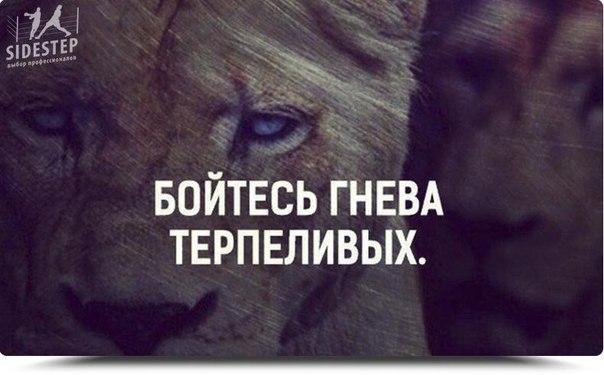 Фото №456239501 со страницы Саника Луценко