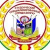 Строй отряд ДонГАУ
