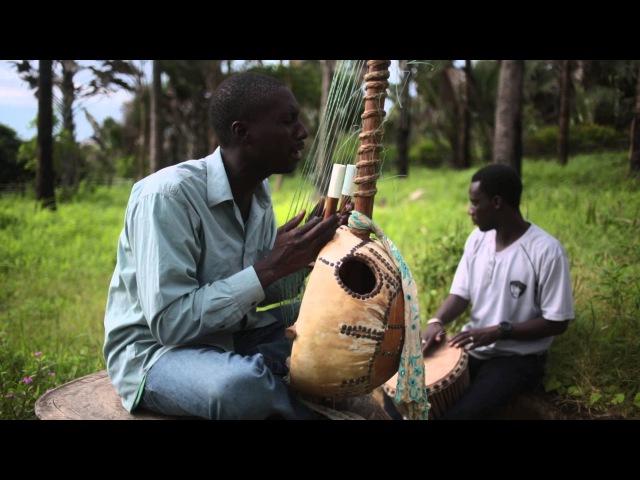 Gambian Kora Player