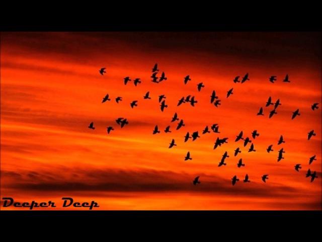 Www.leal-crep.ru/ Deepfunk Van Did - Mesafe (Sebastian Boldt Remix) нержавейкапро.рф/