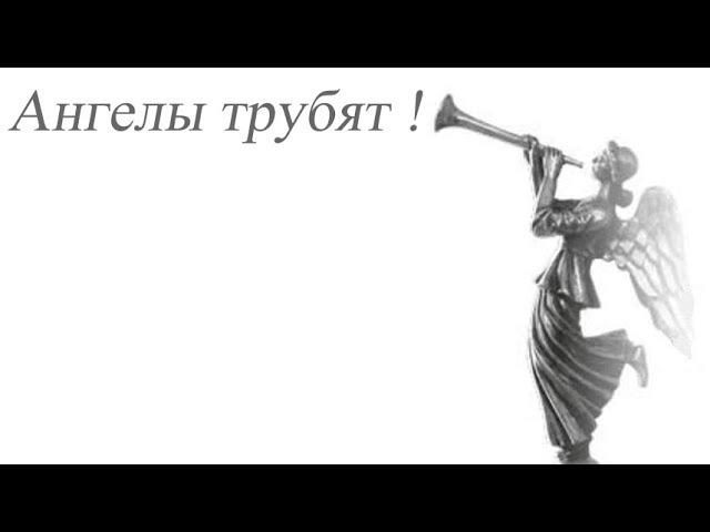 Ангелы трубят Звуки трубы со всего мира 20 in 1