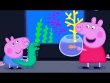 Свинка Пеппа на русском все серии подряд мультики для детей Сборник 2017