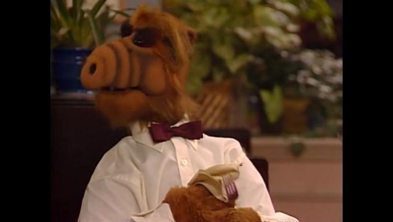 Alf Quote Season 2 Episode 1 _Альф и Лаки