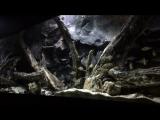 3D объемный фон для аквариума -5