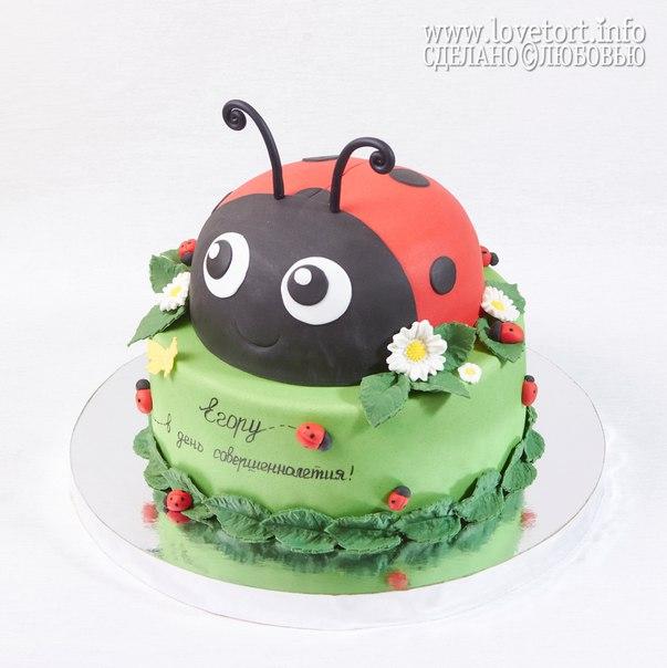 """Торт """"Божья коровка"""" cake"""