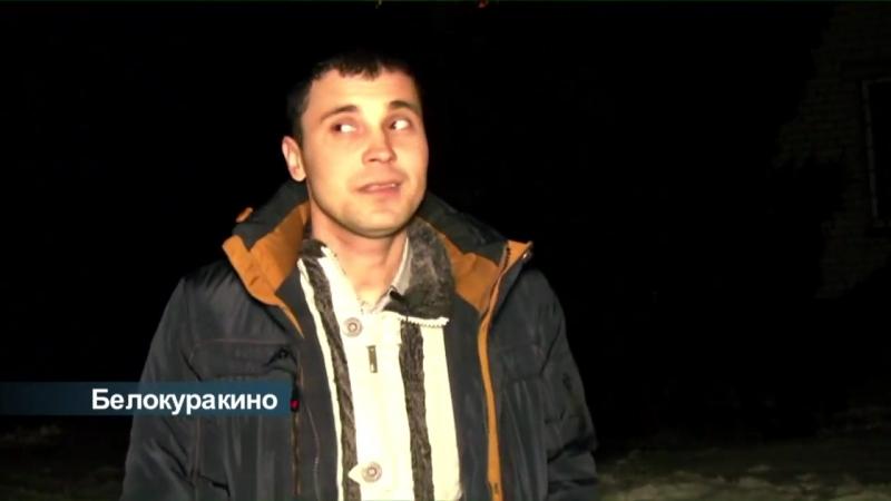 Події. ЛОТ - Скажені лисиці в центрі Білокуракине, 27.01.2017
