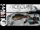 Tict Icecube IC 69F
