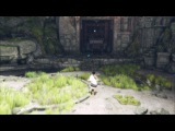The Last Guardian framerate reduced to a crawl