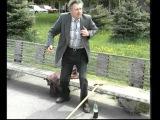 Слава Корецкий Старики-ветераны