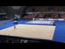 Арина Аверина мяч - Всемирные Игры Вроцлав 2017