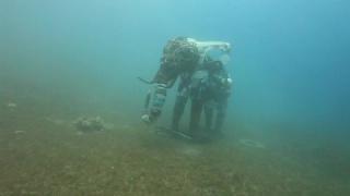 Подводный парк скульптур