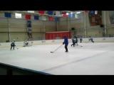 хоккей кошки красный яр
