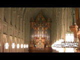 Bach Organ Concert: 'Master Craftsman: The Height of Genius'