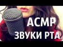 АСМР ЗВУКИ РТА, ПОЦЕЛУИ, ШЕПОТ/ASMR MOUTH SOUNDS, KISSING, RUSSIAN WHISPER