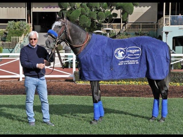 Arrogate - 2016 LONGINES World's Best Racehorse