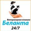 Ветеринарная клиника Беланта - сообщество друзей