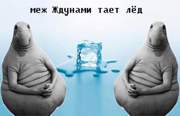 Фото №456239367 со страницы Евгения Обухова