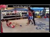 Teenage girls boxing. Very intense