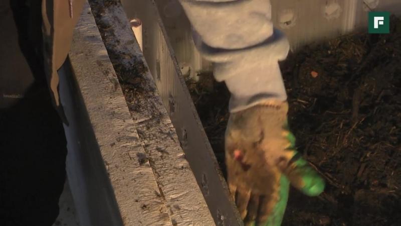 Производство гумуса с помощью калифорнийских червей Личный опыт