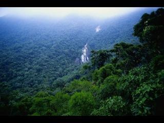 Свет на Краю Земли: В Сердце Амазонии