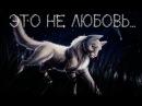 Коты Воители Пепелица Это не любовь...