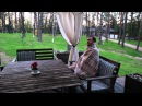 Орёл и решка (Наукоград Обнинск)
