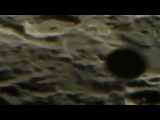 February 3rd UFO's Caught On Lunar Live Stream (Most Likely Balloons)