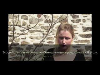 Культ медвеля 5 и взгляд в каменный век (на русском) Bear Cult The Bear Cult 5