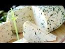 Как сделать адыгейский сыр в домашних условиях