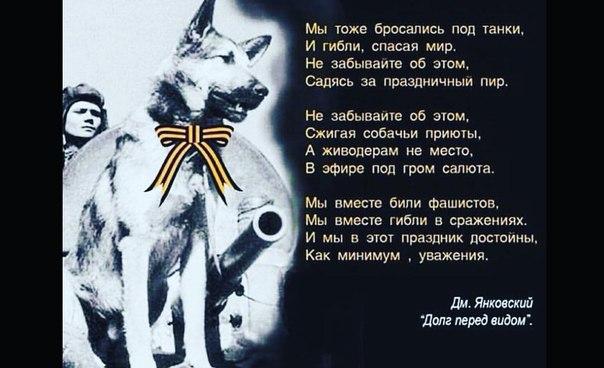 Ольга Попова | Красноярск