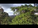 BBC Планета Земля Planet Earth 2006 08 Джунгли