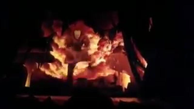 Клип на KIWI