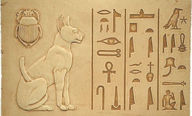 Животные в храмах SwSDp9IVC7o