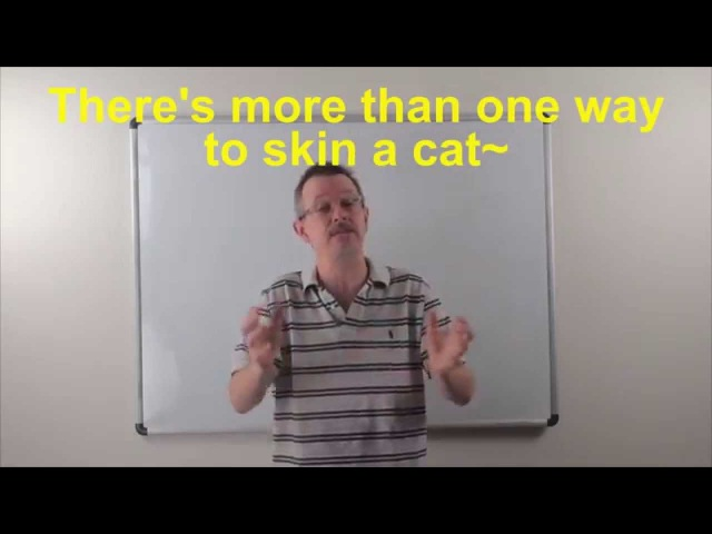 Learn English: Daily Easy English Expression 0790: more than one way to skin a cat