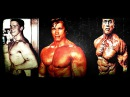Arnold Schwarzenegger - Transformation From 1 To 70 years