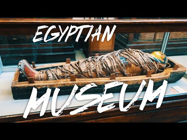 Египетский музей. Сокровища древнего египта, саркофаги и мумии.