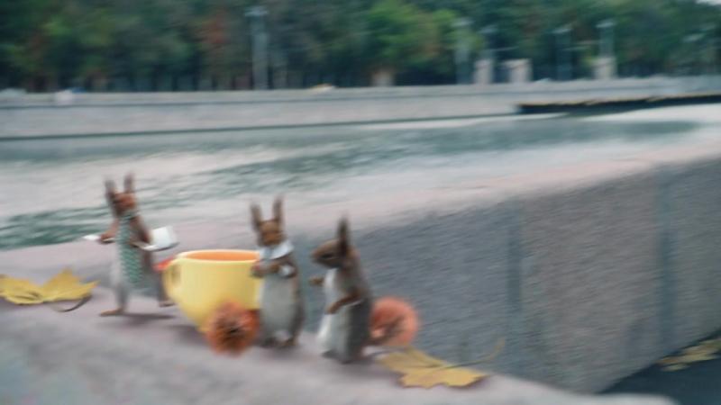 Белки атакуют Первый канал. Доброе утро. Анонс